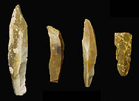 Clovis blades from Gault site, about 13,000 years old. These blades were used as is as cutting tools or further shaped to create various other tools.
